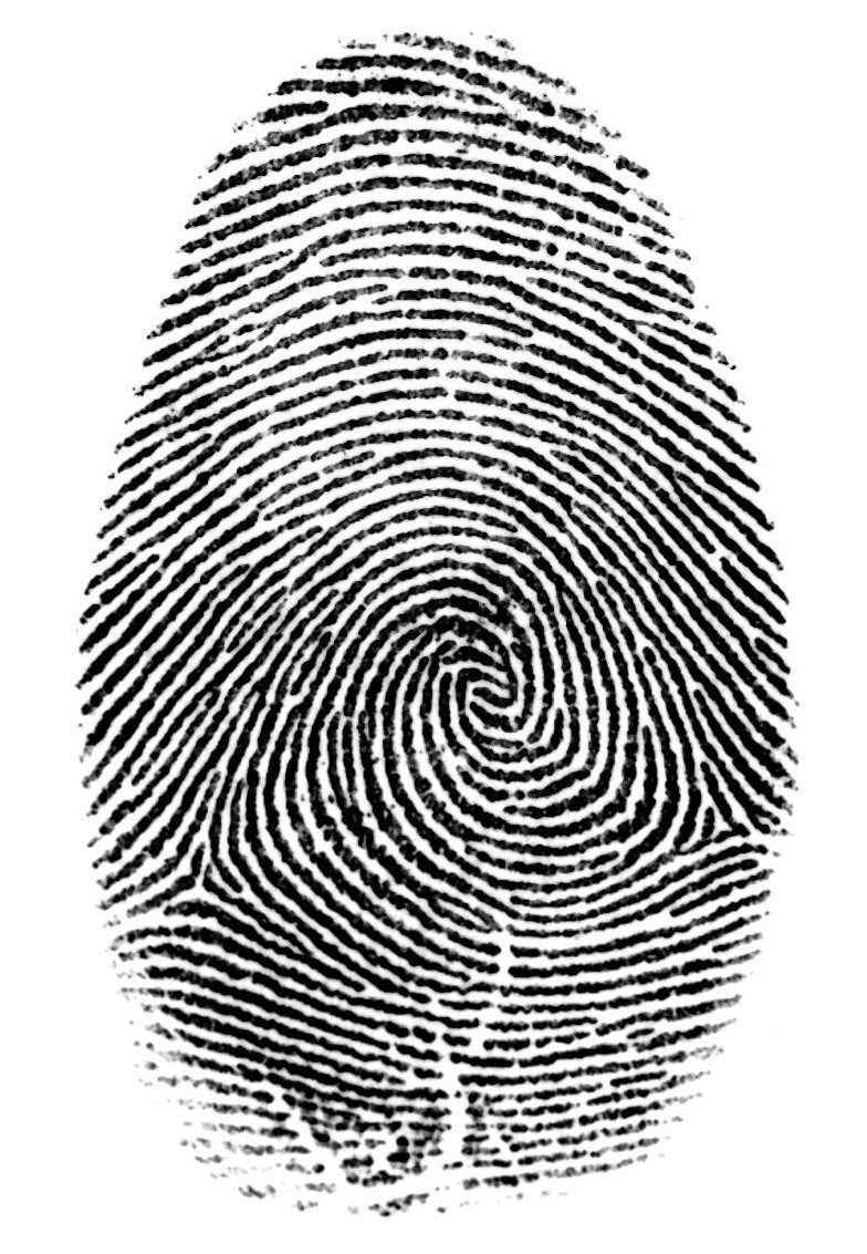online fingerprint ip address